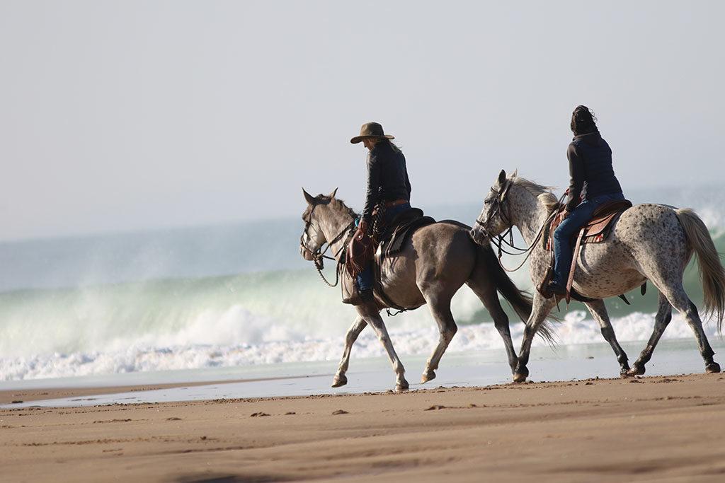 Balade équestre sur la plage