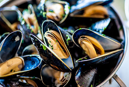 moules bouchot marinieres vendee