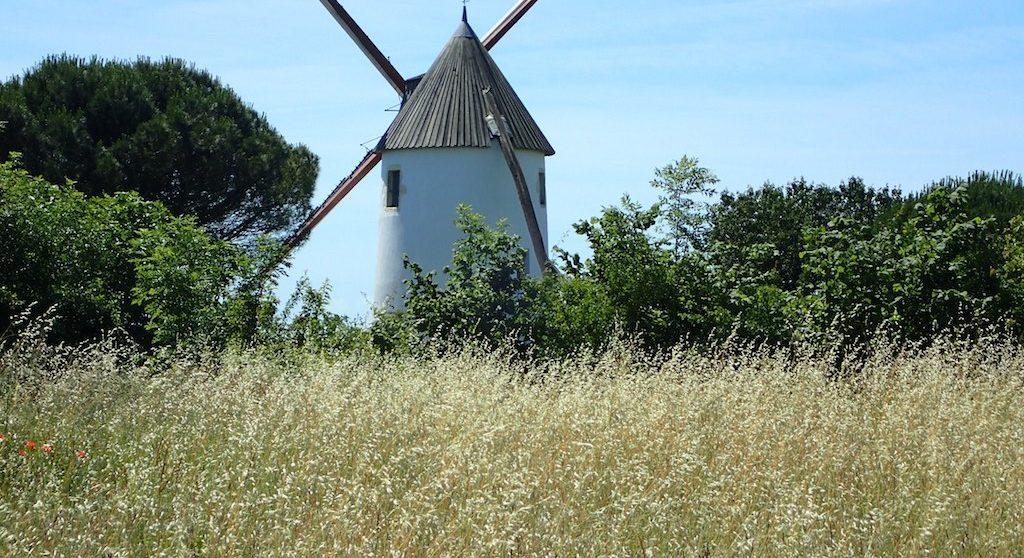 location clos du moulin nature