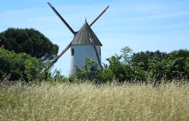 location nouveau gite insolite moulin vendee
